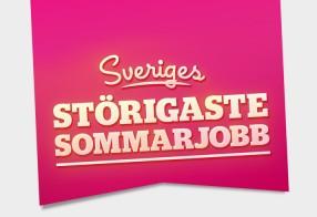 Sveriges Störigaste Sommarjobb